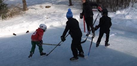 Back Yard Ice Rink